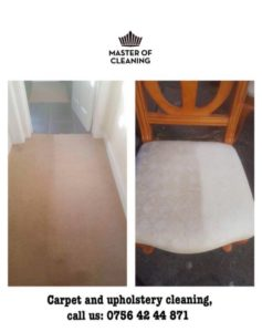 Upholstery Cleaners in Clarkston
